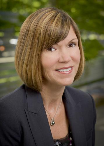 Bethany Mayer, former head of HP's network functions virtualization business, will become CEO of Ixia.