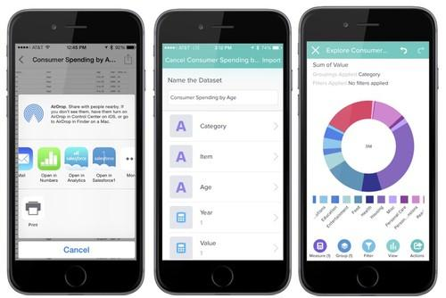 Salesforce's Wave Mobile Connector