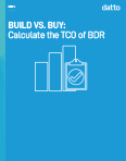 Build vs. Buy: Calculate the TCO of BDR